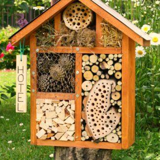Hotely pre hmyz